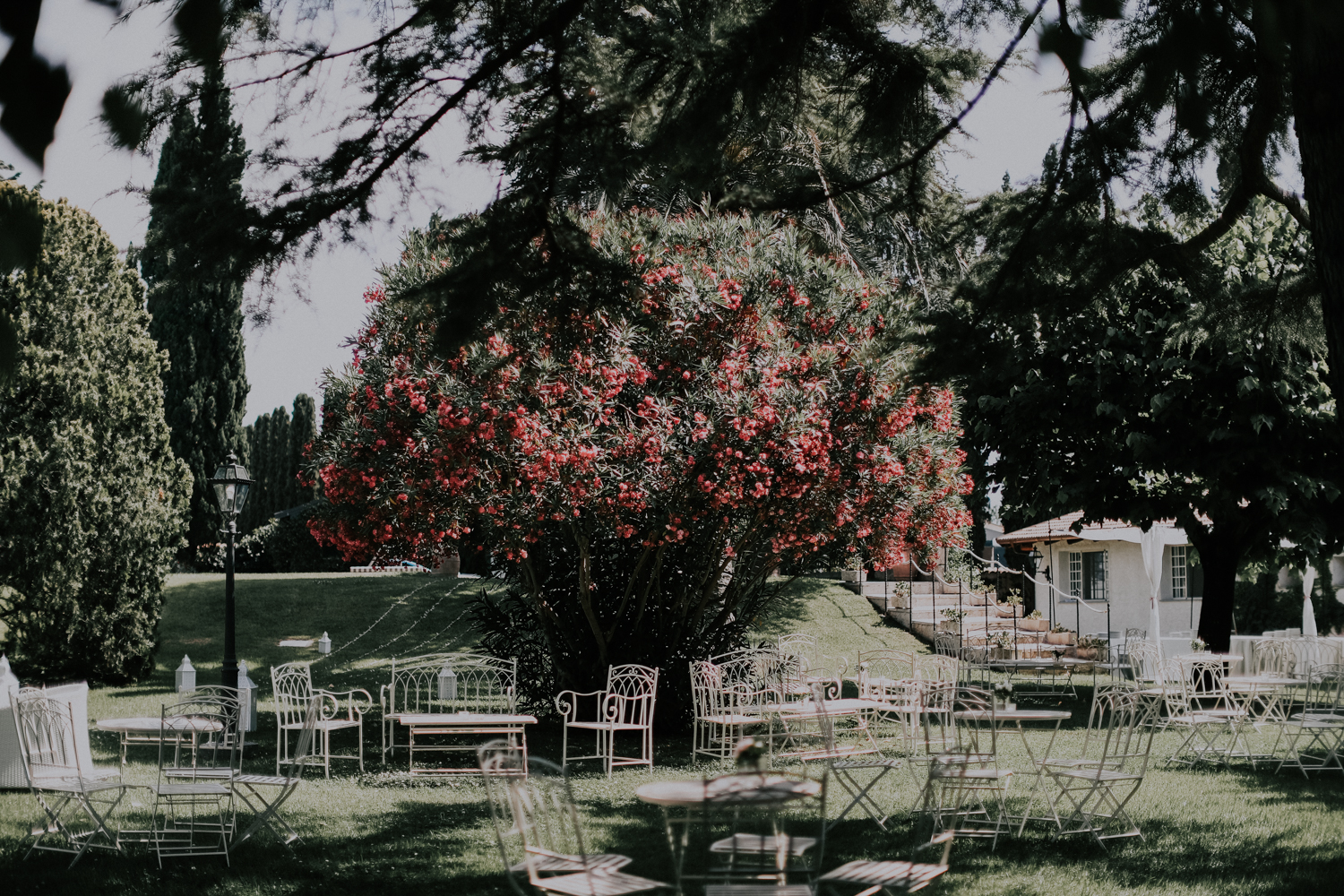 http://www.weddingamalfi.com/wp-content/uploads/Alessandro-and-Diego-white-chairs-for-guests-in-the-garden.jpg