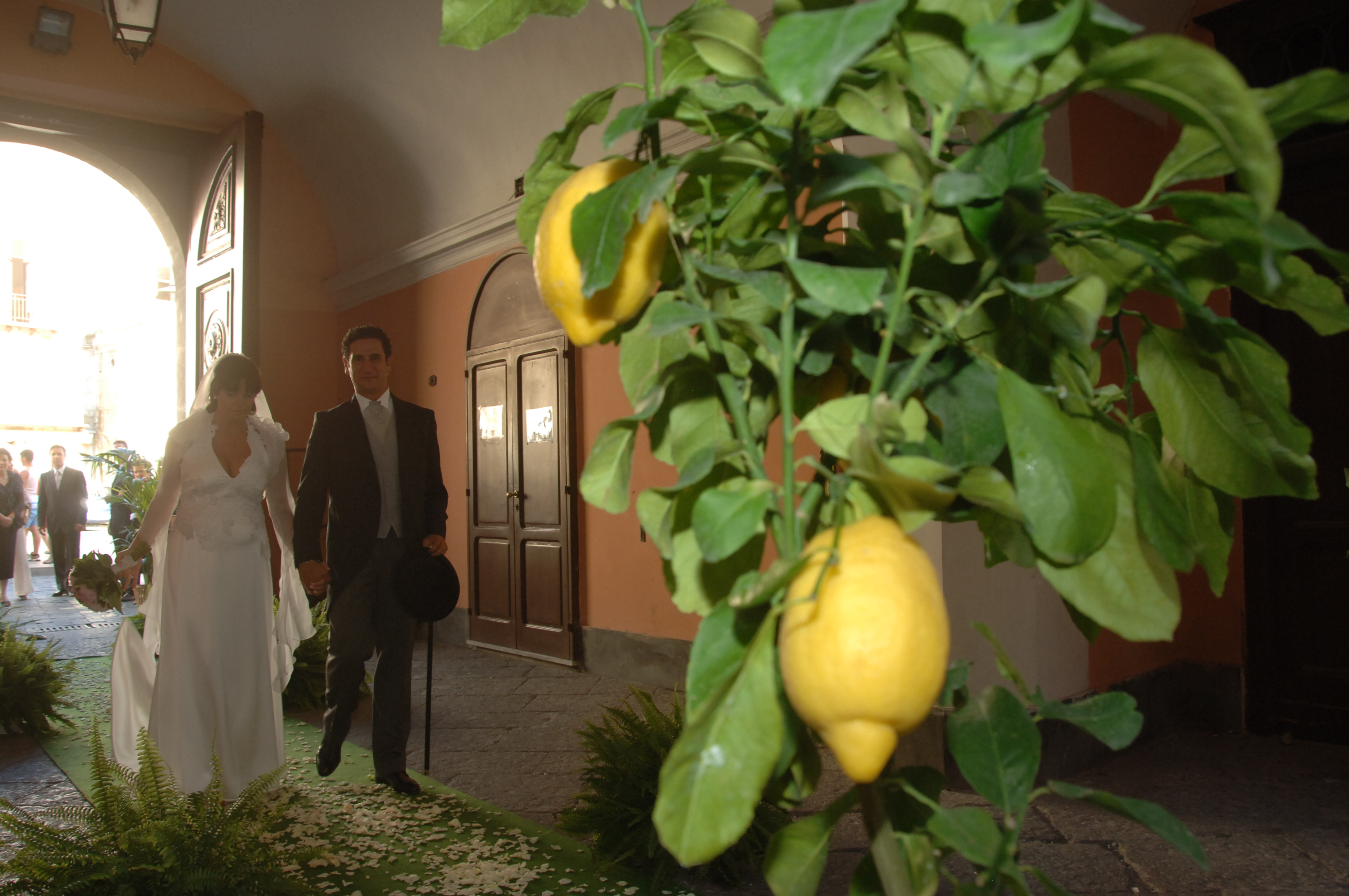 http://www.weddingamalfi.com/wp-content/uploads/Enza-and-Mario-Amalfi-Coast-lemons-decorations.jpg